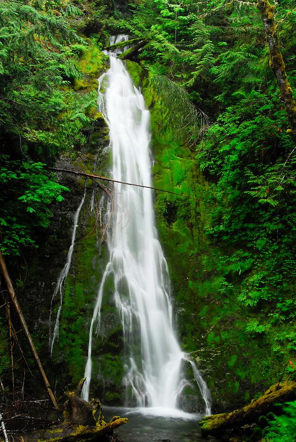 Marymere Falls, Olympic National Park, Washington, US