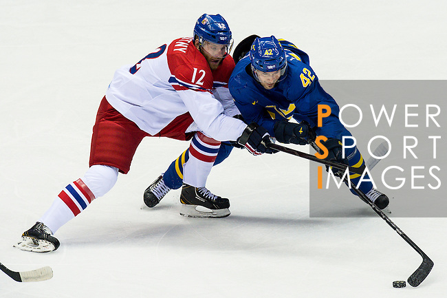 (R) Jiri Novotny of Czech Republic competes for the puck (L) Jimmie Ericsson of Sweden during the match between Sweden vs Czech Republic during their Men's Ice Hockey Preliminary Round Group C game on day five of the 2014 Sochi Olympic Winter Games at Bolshoy Ice Dome on February 12, 2014 in Sochi, Russia. Photo by Victor Fraile / Power Sport Images