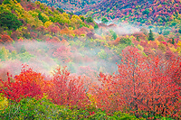 Autumn colors at Graveyard Fields