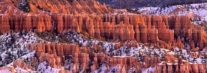 904000035 panoramic view of a winter sunrise over hoodoos in queens garden from sunrise point bryce canyon national park utah