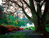 Tom Mackie, FLOWERS, photos, Copper Beech Framing Lake, Sheffield Park, East Sussex, England, GBTM892101,#F# Garten, jardín