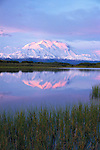 Denali, Denali National Park, Alaska