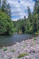 ORCAN_D216 - USA, Oregon, Mount Hood National Forest, Old growth forest borders the Clackamas River - a federally designated Wild and Scenic River.