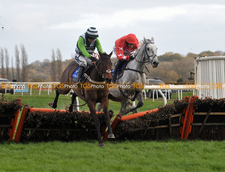 Rock On Ruby ridden by Ruby Walsh takes the last and goes on to win from Empire Levant ridden by by Harry Derham in the Sportingbet Intermediate Hurdle (Registered As The Gerry Feilden Hurdle) at Newbury Racecourse, Berkshire - 26/11/2011 - MANDATORY CREDIT: Martin Dalton/TGSPHOTO - Self billing applies where appropriate - 0845 094 6026 - contact@tgsphoto.co.uk - NO UNPAID USE.