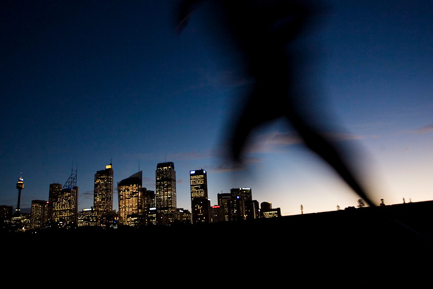 A runner is silhouetted against the Sydney skyline at dusk, July 2, 2007. Photo: Ed Giles.