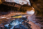 Water swirls inside the lava tube of the Subway at Zion national park in Utah.