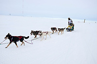 The first ever Jamaican musher, Newton Marshall, runs on the Bering Sea as he nears the finish line in Nome during the 2010 Iditarod
