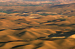 Long shadows form across the hillside in the late afternoon on the Palouse of Eastern Washington State.