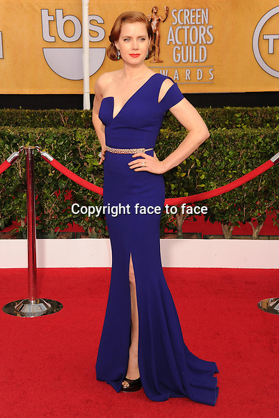 LOS ANGELES, CA- JANUARY 18: Actress Amy Adams arrives at the 20th Annual Screen Actors Guild Awards at The Shrine Auditorium on January 18, 2014 in Los Angeles, California.<br />