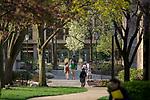 MC 4.18.17 Spring Scenic 05.JPG by Matt Cashore/University of Notre Dame