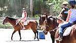 Students participate in Kim Chappell's Wild Willy's Horse Camp in Aug. 2010, in Gardnerville, Nev. Photo by Cathleen Allison