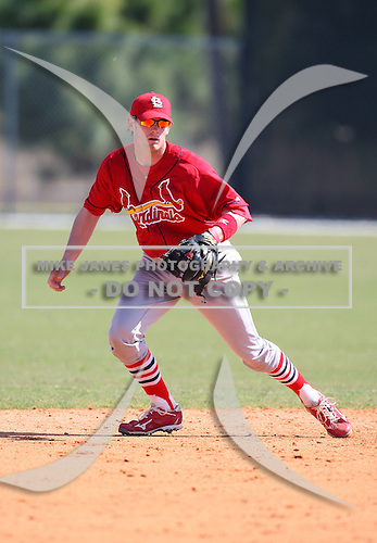 March 19, 2010:  Shortstop Ryan Jackson of the St. Louis Cardinals organization during Spring Training at the Roger Dean Stadium Complex in Jupiter, FL.  Photo By Mike Janes/Four Seam Images