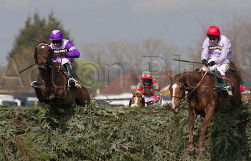 13.04.2012 Aintree, England. The Grand National Festival Ladies Day. Always Waining (left, in purple shirt) ridden by jockey Tom O'Brien jumping the final fence before going on to win the John Smith's Topham Steeple Chase for the third year running.