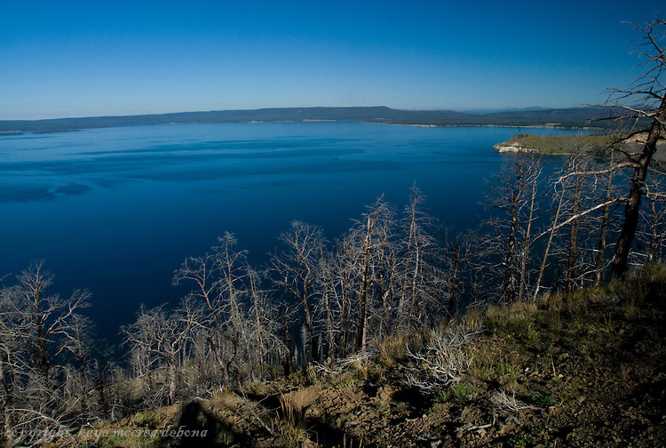 Lake Butte Overlook viewing all of Lake Yellowstone to the west.