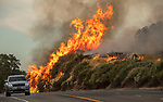 Highway 41 fuels reduction project near Coarsegold, California. Photo by Cal Fire/Al Golub