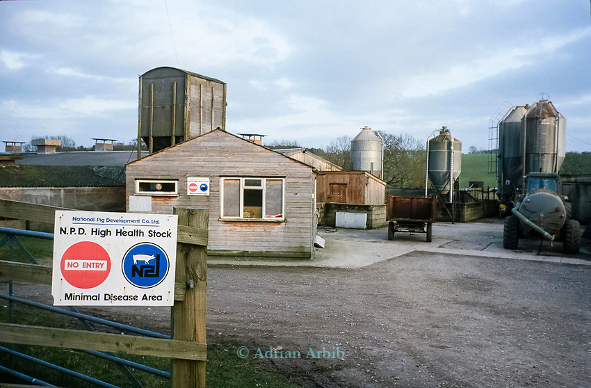 One of the pig farms being investigated near the River Kennet.   In one of Britain's worst ever incidents of river poisoning which killed more than three million fish.<br /> Scientists from the Agency say carryed out door-to-door enquiries at farms and businesses around the village of Little Bedwyn, Wiltshire, <br /> It is thought contaminants entered the river near the village and spread downriver to the Berkshire Trout Farm, near Hungerford, wiping out its entire stock of more than 150 tonnes of trout .<br /> The Environment Agency's area manager Stu Darby said: &quot;This is one of the largest incidents of its type in the region to date