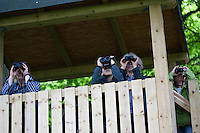 Vogelbeobachtung, Vogel-Beobachtung  mit Fernglas, Ferngläsern von einem Beobachtungsturm aus, Exkursion, bird-watching
