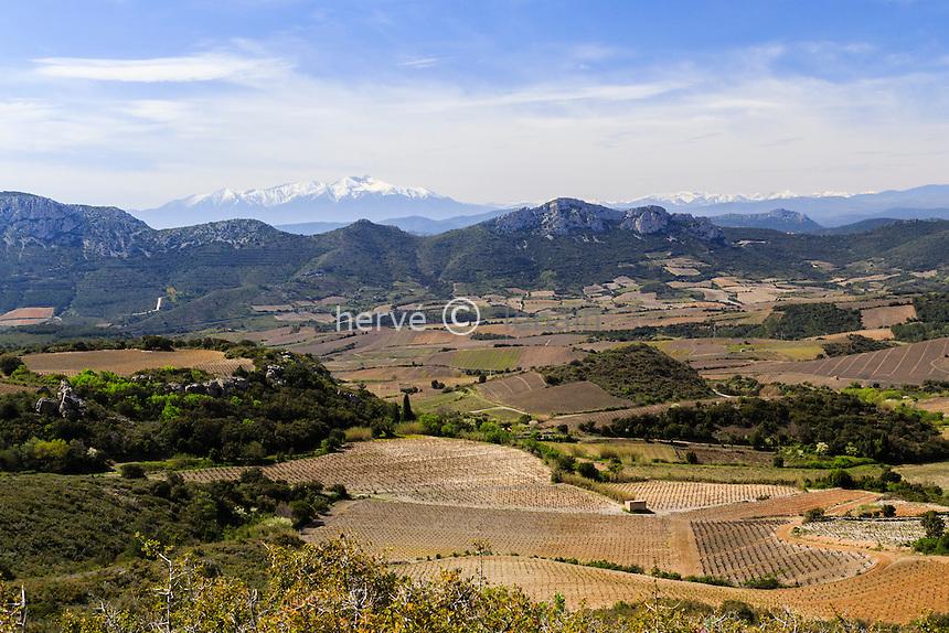France, Pyrénées-Orientales (66), Maury, paysage des Corbières et le pic du Canigou au loin et le vignoble AOC Maury // France, Pyrenees Orientales, Maury, landscape with vineyards