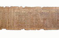 Ancient Egyptian Book of the Dead papyrus - Spell 17 about the God Atum, Iufankh's Book of the Dead, Ptolemaic period (332-30BC).Turin Egyptian Museum. White Background<br /> <br /> the spell is one of the ongest in the Book of the Dead and one of its most complex frequently used in many other Books of the Dead. It is about the nature of the creator God Atum and is meant to make sure the deceased is capable of demonstrating his of her knowledge of religious secrets<br /> <br /> The translation of  Iuefankh's Book of the Dead papyrus by Richard Lepsius marked a truning point in the studies of ancient Egyptian funereal studies.