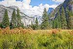 The view of North Dome and Half Dome from Leidig Meadow, Yosemite National Park, CA, USA