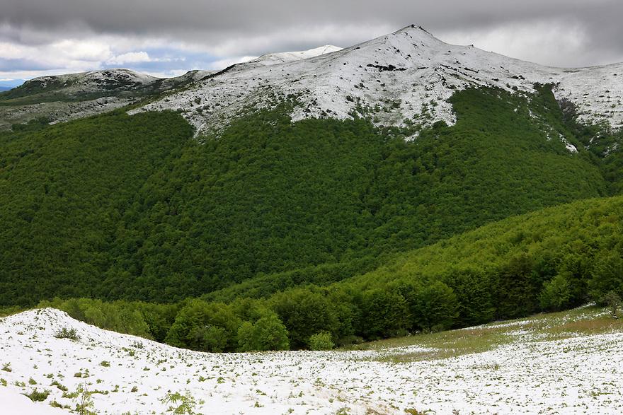 Kopa Bukowska Peak, Bieszczady National Park, Poland