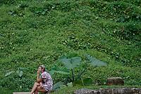 ruinas y pirámides de la ciudad Maya llamada .Parque en el estado de Chiapas  en el suroeste.de  Mexico que goza de clima tropical.