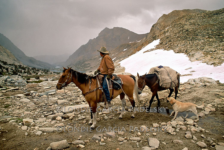Cowboy leading pack mule over Piute Pass in the rugged Sierra Nevada, Inyo National Forest, California