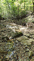 NWA Democrat-Gazette/FLIP PUTTHOFF <br /> Part of the hike follows Leatherwood Creek, which can be    Sept. 16 2015    mostly dry in early autum.