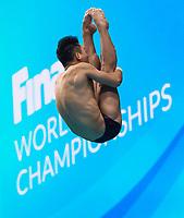 Training Session<br /> Diving 13/07/2017 <br /> XVII FINA World Championships Aquatics<br /> Duna Arena Budapest Hungary  <br /> Photo Andrea Staccioli/Deepbluemedia/Insidefoto