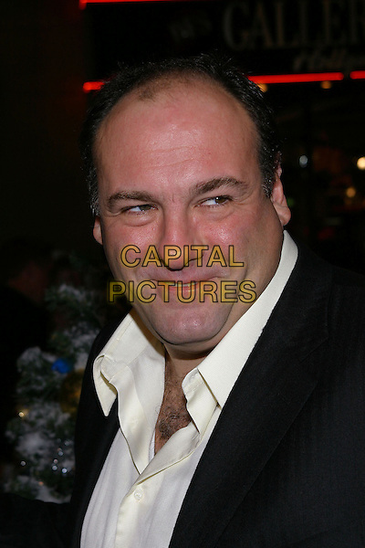 JAMES GANDOLFINI.'Surviving Christmas' Los Angeles Premiere held at the Grauman's Chinese Theater. .October 14th, 2004.headshot, portrait, double chin.www.capitalpictures.com.sales@capitalpictures.com.© Capital Pictures.