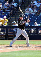 Zack Collins - Chicago White Sox 2020 spring training (Bill Mitchell)