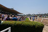 """ARCADIA, CA  JUNE 23: The crowd watches as Justify parades down the stretch on  """"Justify Day"""" on June 23, 2018 at Santa Anita Park in Arcadia, CA.  (Photo by Casey Phillips/Eclipse Sportswire/Getty Images)"""