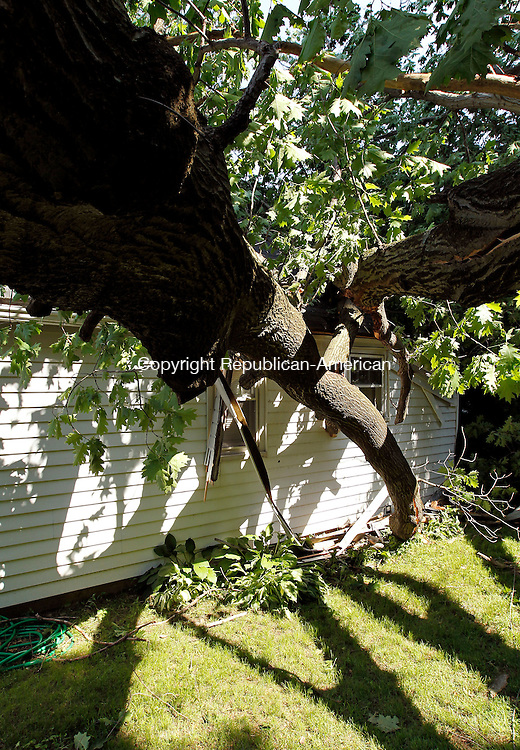 Naugatuck, CT-27, May 2010-052710CM01 Damage is seen on the rear of the residence on Woodlawn Ave in Naugatuck Thursday afternoon.  A recent storm is suspected of knocking the tree onto the family's home.  Work crews are expected to remove the tree sometime today.  --Christopher Massa Republican-American