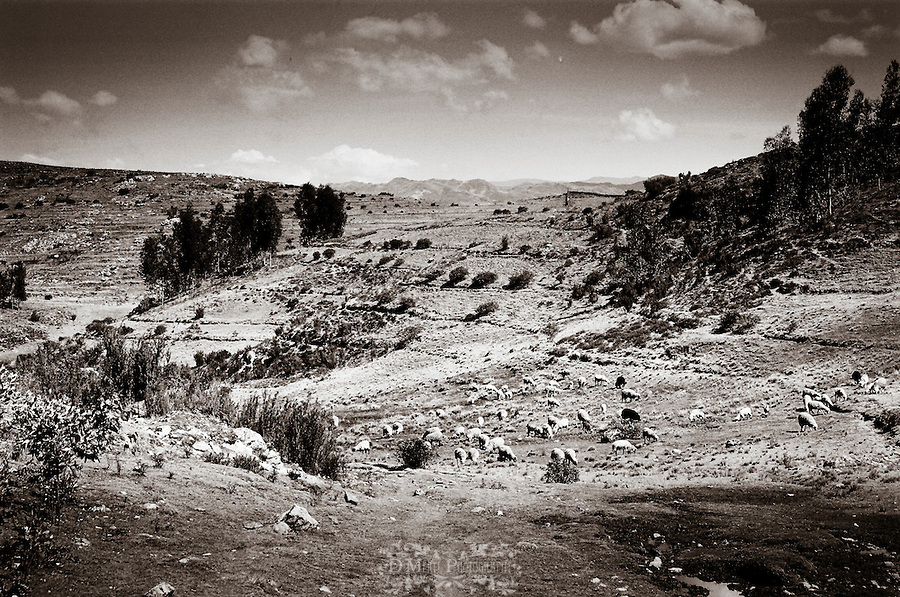 sacred valley, peru, pisaq, cultural, b&w, historical, inca, mountains, people, traditional,ollantaytambo, Sacsayhuaman, cusco