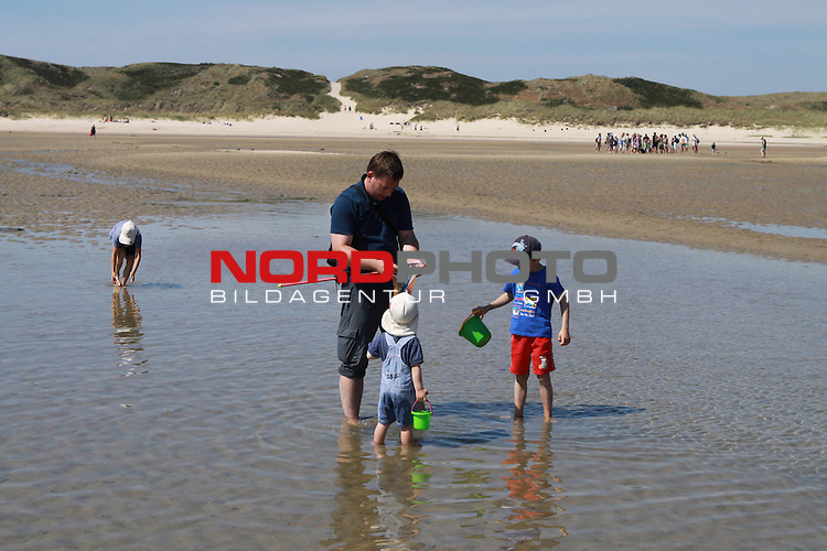 09.08.20113, Nordseeinsel Amrum, GER, im Bild Wattwanderer sammeln Muscheln, Foto © nph / Kohring