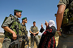 A Palestinian woman argues with Israeli border police over the destruction of olive trees to make way for Israel's controversial West Bank barrier in the village of Al Walaja near Bethlehem on 08/06/2010.