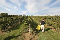 Winery in Charlottesville, VA. Photo/Andrew Shurtleff