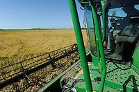 URUGUAY Bella Uniòn , 2100 Hektar Farm der Brueder Karol und Aleco Pinczak, Nachkommen polnischer Einwanderer, Reis Ernte mit John Deere Maehdrescher , Erntertrag 10 Tonnen pro Hektar, Reisfelder wurden durch Wasser vom Fluss Uruguay bewaessert / .URUGUAY Bella Union, 2100 hectares farm, paddy harvest with John Deere combine, yield 10 tons per hectare, rice fields irrigated with water from river Uruguay