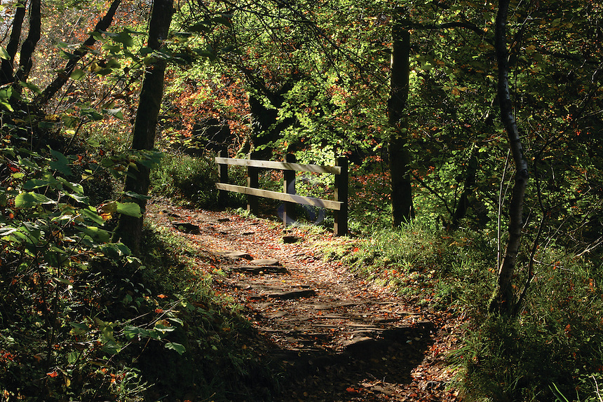 The Clyde Walkway in autumn, New Lanark, South Lanarkshire<br /> <br /> Copyright www.scottishhorizons.co.uk/Keith Fergus 2011 All Rights Reserved