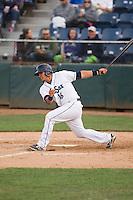Everett Aquasox catcher Johan Quevedo (16) at bat during a game against the Eugene Emeralds at Everett Memorial Stadium in Everett, Washington.  Eugene defeated Everett 7-5. (Ronnie Allen/Four Seam Images)