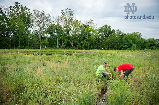 June 10, 2016; Research at the ND LEEF facility in St. Patrick's County Park. (Photo by Matt Cashore/University of Notre Dame)
