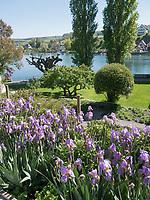 Garten, Kloster zum heiligen Georg, Stein am Rhein, Kanton Schaffhausen, Schweiz <br /> garden, Saint George's Abbey in Stein am Rhein, Canton Schaffhausen, Switzerland