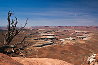 Green River valley in Canyonlands National Park