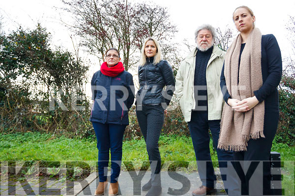 Concerned residents in Causeway Cluin na aAisling estate: L to R: Deidre Yallop, Antoinette Legg, Frank Royle and Amy Goggin.