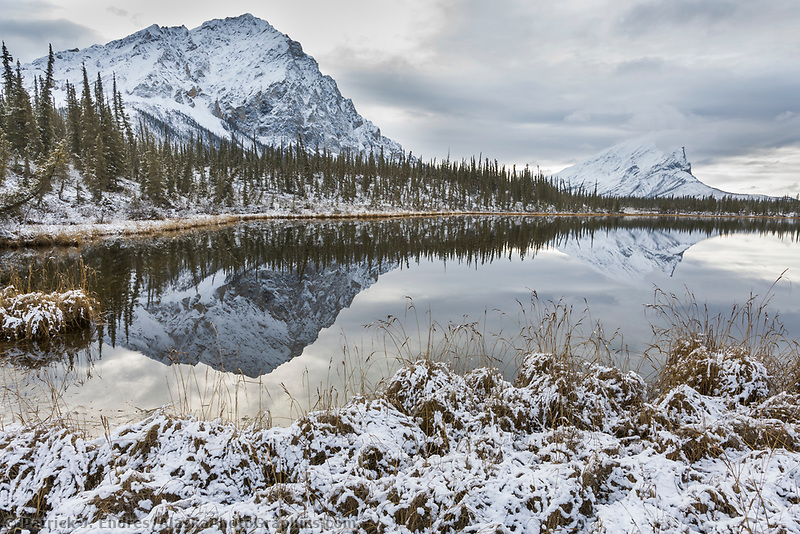 Dillon and Sukakpak mountain of the Brooks Range reflect in the calm waters of a tundra pond, Arctic, Alaska