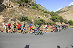 Green Jersey Alejandro Valverde (ESP) Movistar Team on the slopes of Sierra de la Alfaguara near the finish of Stage 4 of the La Vuelta 2018, running 162km from Velez-Malaga to Alfacar, Sierra de la Alfaguara, Andalucia, Spain. 28th August 2018.<br /> Picture: Eoin Clarke   Cyclefile<br /> <br /> <br /> All photos usage must carry mandatory copyright credit (&copy; Cyclefile   Eoin Clarke)