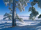 Marek, CHRISTMAS LANDSCAPES, WEIHNACHTEN WINTERLANDSCHAFTEN, NAVIDAD PAISAJES DE INVIERNO, photos+++++,PLMP0164Z,#xl#