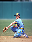 Robin Yount #19 of the Milwaukee Brewers catches the ball during a game. Yount played for the Brewers from 1974--93. (Photo by Rich Pilling)