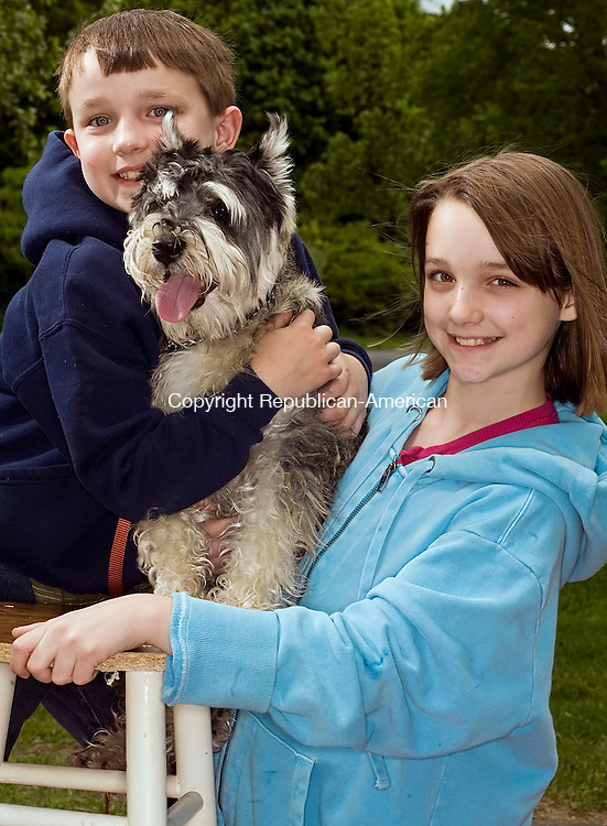 SOUTHBURY--24 May 08--052408TJ09 - Charlie Reichl, 8, left, and his sister, Irene, with Stanley, an 8-month-old mini schnauzer who finished third in the grandogs competition at the Heritage Village dog show on Saturday, May 24, 2008. Visit www.rep-am.com to view a photo gallery from this event. (T.J. Kirkpatrick/Republican-American)