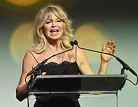 NEW YORK, NY - NOVEMBER 02: Actress Goldie Hawn speaks onstage during the Samsung annual charity gala 2017 at Skylight Clarkson Square on November 2, 2017 in New York City.  Credit:  George Napolitano/MediaPunch /NortePhoto.com